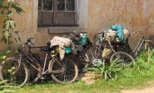 Ngoi Lwakabila Vincent and Banze Mukangala travelled 250 iles by bicycle to attend the conference
