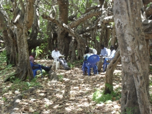 Group in practice under Chilema tree